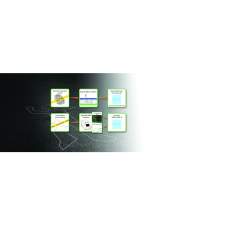 ELE1428 Display Image