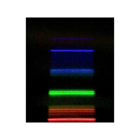 SESEP205A Display Image